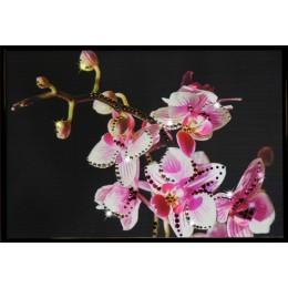 """Картина Swarovski """"Маленькая орхидея"""""""