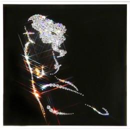 "Картина Swarovski ""Кокетка"", 335 кристаллов, 25 х 25 см"