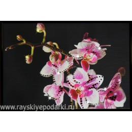 """Картина из кристаллов Swarovski """"Маленькая орхидея"""""""