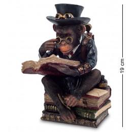 "WS-194 Статуэтка в стиле Стимпанк ""Обезьяна с книгой"""